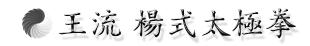 王流楊式太極拳